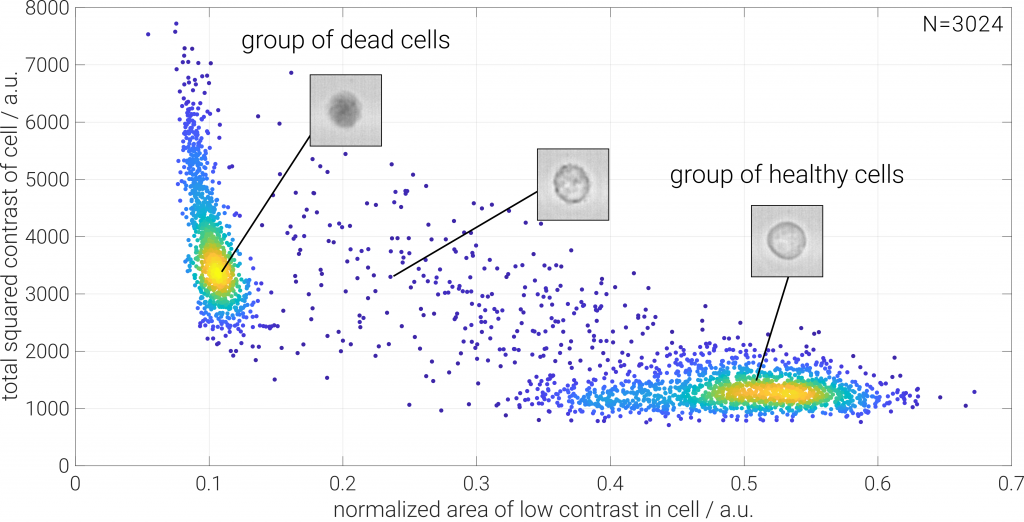 dead cell counting using trypan blue and ODIN